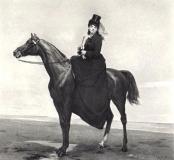 victorian-fashion-1870smadam-horse